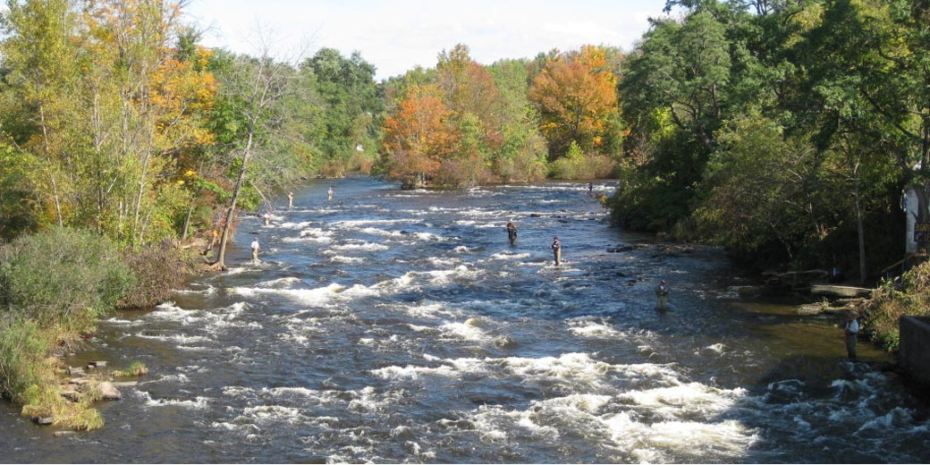 Fly Fishing Resources - Rivers, Lakes, Hatch Charts